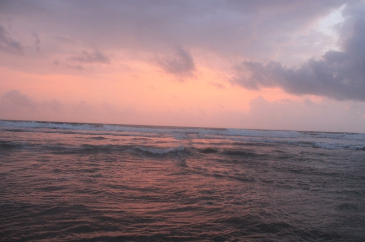 Another one from Candolim! Nature at its best:)