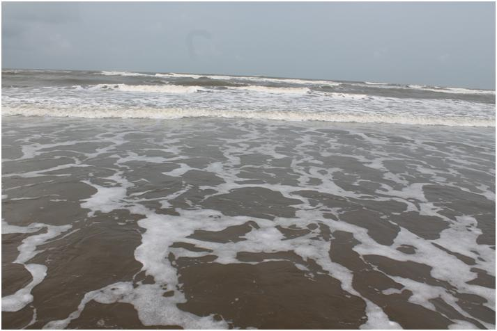 Exploring Morjim beach in North Goa is something which will mesmerize you. Read our North Goa exploration and why you must buy property at GOA. #Goa #beach #travellers #Indiantraveller #travelstory #Morjimbeach